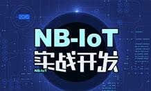 NB-LOT实战开发